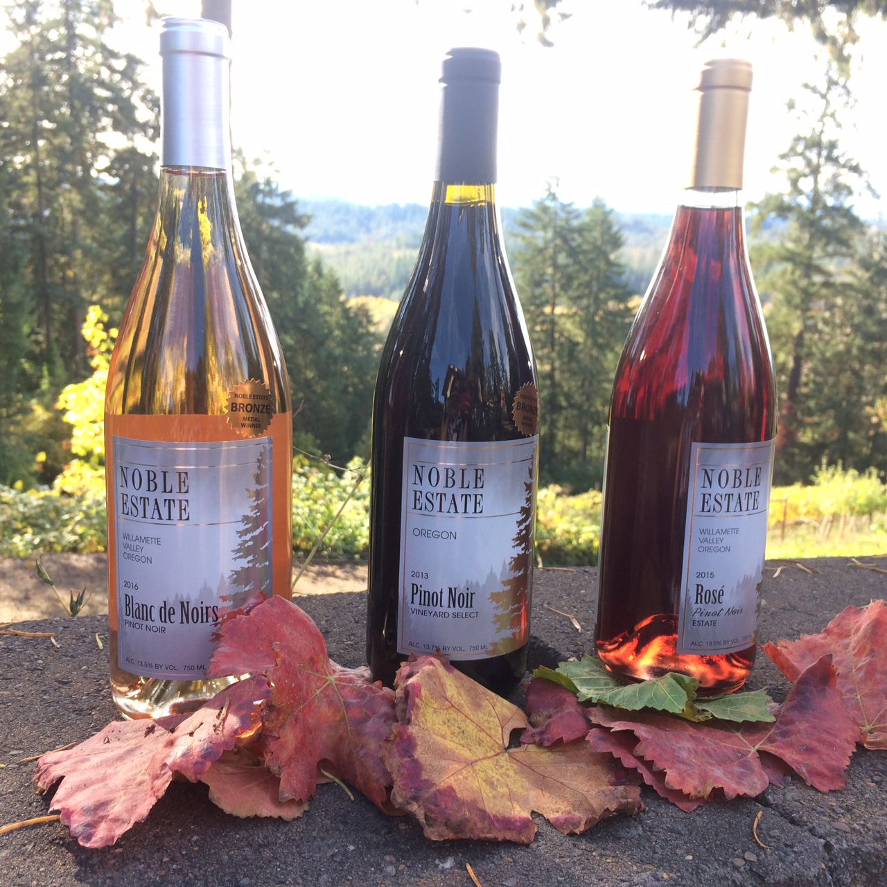 Colors of Pinot Trio