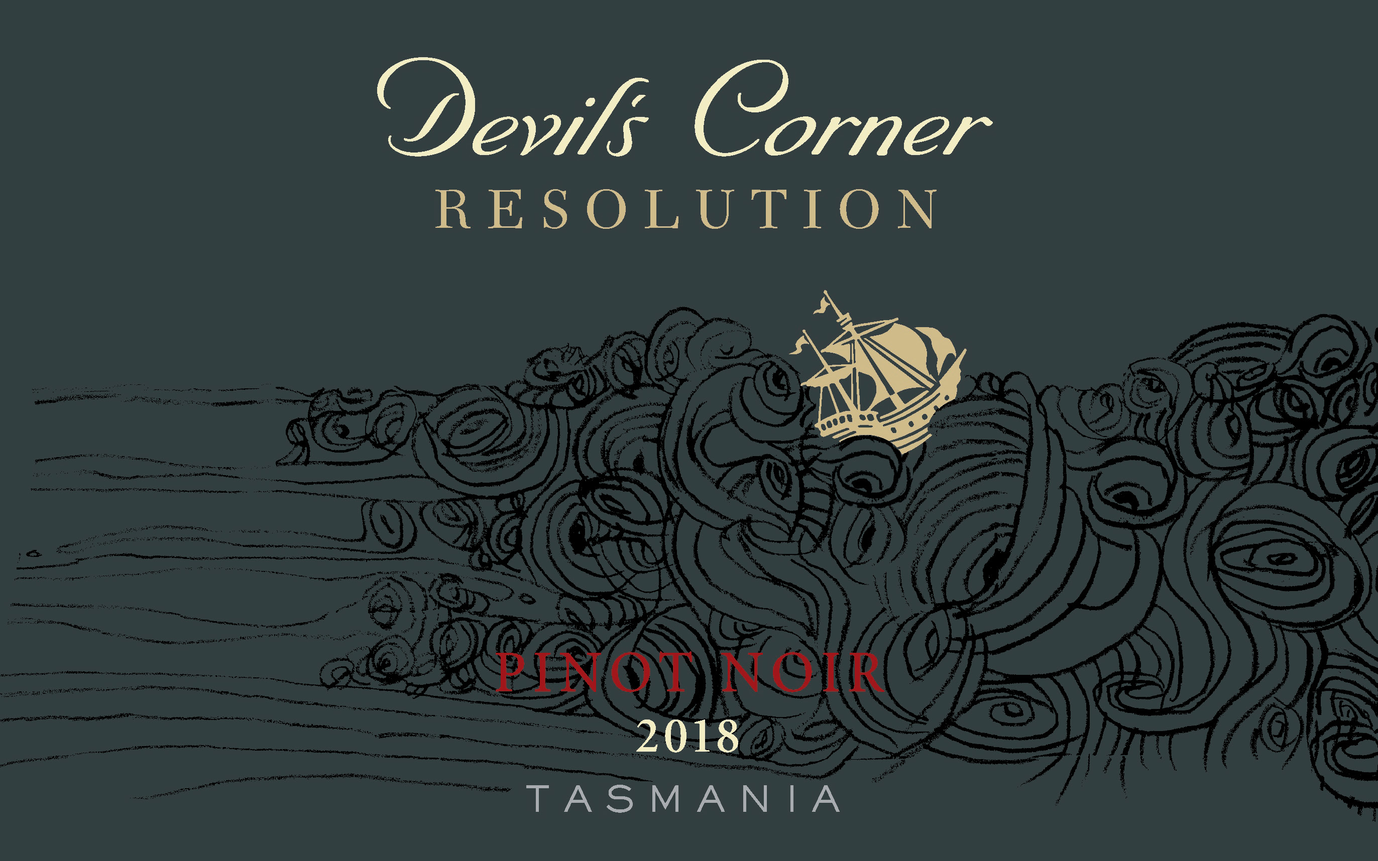 Devil's Corner Resolution Pinot Noir 2018 MAIN