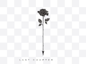 Chapter 24 The Last Chapter Pinot Noir 2019 MAIN