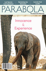 VOL. 41:2 Innocence & Experience LARGE