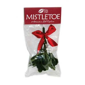 Mistletoe Clip Strip_MAIN