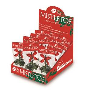Mistletoe Display Case MAIN