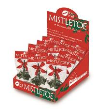 Mistletoe Display Case THUMBNAIL