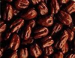 5 oz. box Sugar-Free Chocolate Pecans - Mossy Oak MAIN