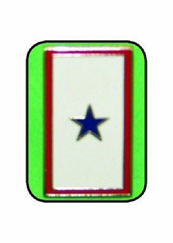 Armed Forces Blue Star Serving Pin