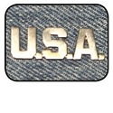 USA Military Style Pin