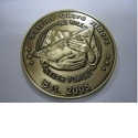 Never Forget Challenge Coin