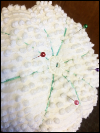 Vintage Chenille Pincushion SWATCH