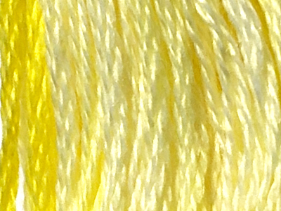 DMC Color Variations Embroidery Floss – 4077 MAIN