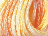 DMC Color Variations Embroidery Floss – 4090 THUMBNAIL