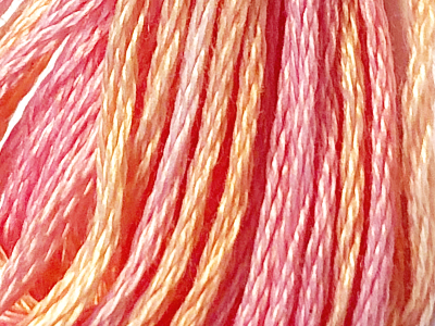 DMC Color Variations Embroidery Floss – 4110 MAIN