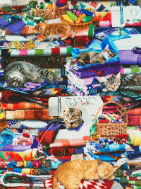 "Timeless Treasures ""Cats & Dogs"" # Cat-CD6878-Multi - Cats on Quilts THUMBNAIL"
