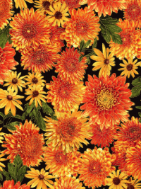 "Timeless Treasures ""Harvest"" # 3213 - Fall Flowers THUMBNAIL"