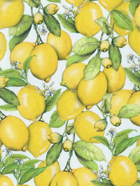 "Robert Kaufman ""Down on the Farm"" # AMKD-19303-137-LEMON - Lemons THUMBNAIL"