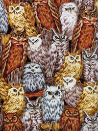 "Fabri-Quilt, Inc. ""Autumn in the Forest"" #112-28121 - Owls THUMBNAIL"