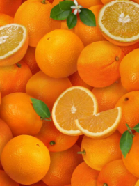 "Elizabeth's Studio ""Food Festival"" # 261-ORANGE – Oranges THUMBNAIL"