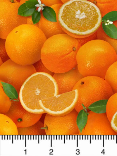 "Elizabeth's Studio ""Food Festival"" # 261-ORANGE – Oranges MAIN"