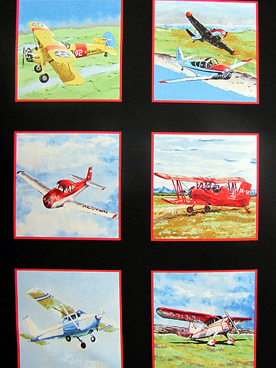 "Exclusively Quilters ""Flying High"" #3994-60821 col. 8 - Planes Panel MAIN"