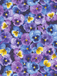 "Timeless Treasures ""Pansy"" # C7722-Purple – Blue, Purple and Gold Pansies THUMBNAIL"