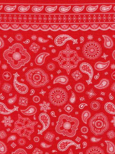 buy popular 2e9e9 6335a Red - Red Bandana Print MAIN