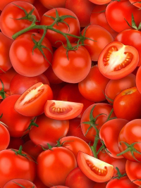 "Elizabeth's Studio ""Food Festival"" # 436-RED – Tomatoes THUMBNAIL"