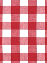 "Moda ""Picnic Basket Wovens"" # 12134-11 — Red and White Gingham THUMBNAIL"