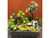 Whimsical Fairy Garden THUMBNAIL