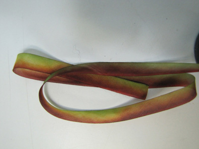"Hanah Hand-dyed Silk Ribbon, 7/16"" — Leaves Turning MAIN"
