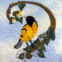 Playing For the Baltimore Oriole Pattern THUMBNAIL