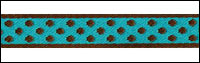 Trim XX - brown polka dots, turquoise background THUMBNAIL