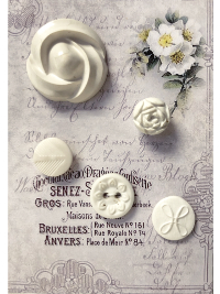 VINTAGE Cream-Colored Buttons on French Card with White Flowers THUMBNAIL