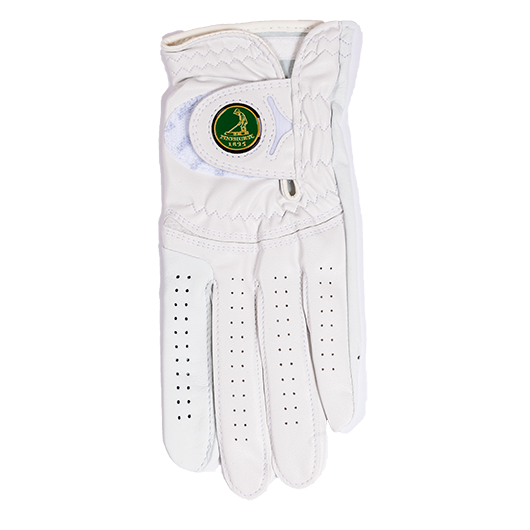 FootJoy Q Mark Glove_MAIN