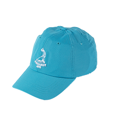 Men's Pinehurst Performance Epic Cap