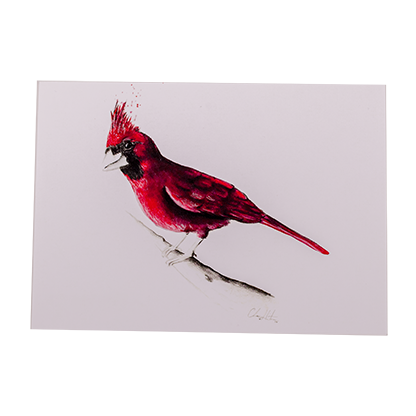 The Cardinal Note Card