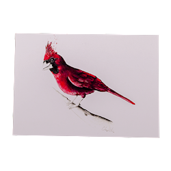 The Cardinal Notecard THUMBNAIL