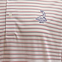 Men's Donald Ross Tartan Collection- 2-Stripe Polo SWATCH