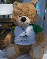 "Putter Boy 9"" Teddy Bear Stuffed Animal THUMBNAIL"