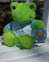 "Putter Boy 6"" Sea Turtle Stuffed Animal THUMBNAIL"