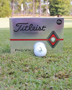 Titleist ProV1X 2019 Release-Sleeve of 3 LARGE