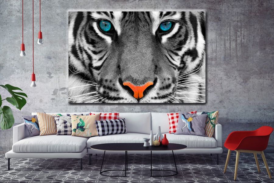 WILDLIFE, ANIMALS, SAHARA, AFRICA, ZOO, BIG CATS, HUNTING, BEARS, WOLVES, LION, ZEBRA, TIGER LARGE