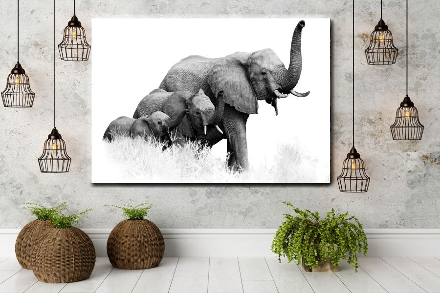 Canvas Art Wall Decor, ANIMALS ART, WILDLIFE ART 35045A THUMBNAIL