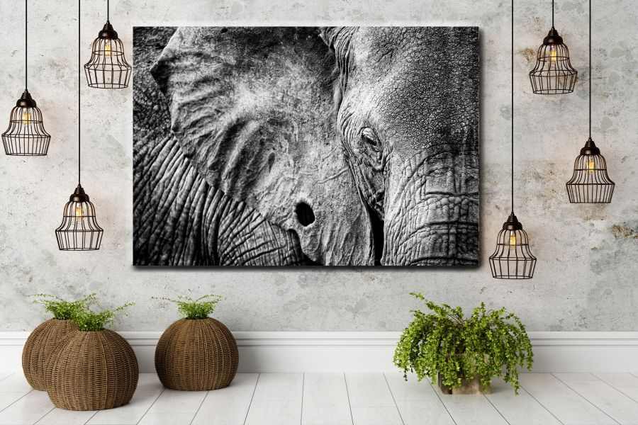 Canvas Art Wall Decor, CANVAS Art ANIMALS 35061 110 THUMBNAIL