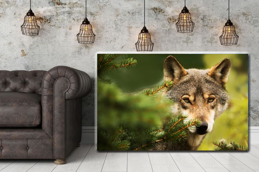 Canvas Art Wall Decor, CANVAS Art ANIMALS 35066 110 THUMBNAIL