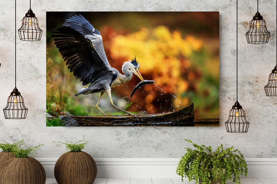 HD Metal Art, Indoor/Outdoor Wall Decor, BIRDS 70000 911 THUMBNAIL
