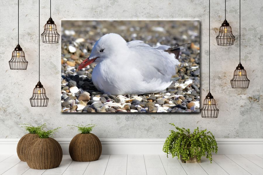 HD Metal Art, Indoor/Outdoor Wall Decor,  Pixolate, Subtint BIRDS 70004 200 THUMBNAIL