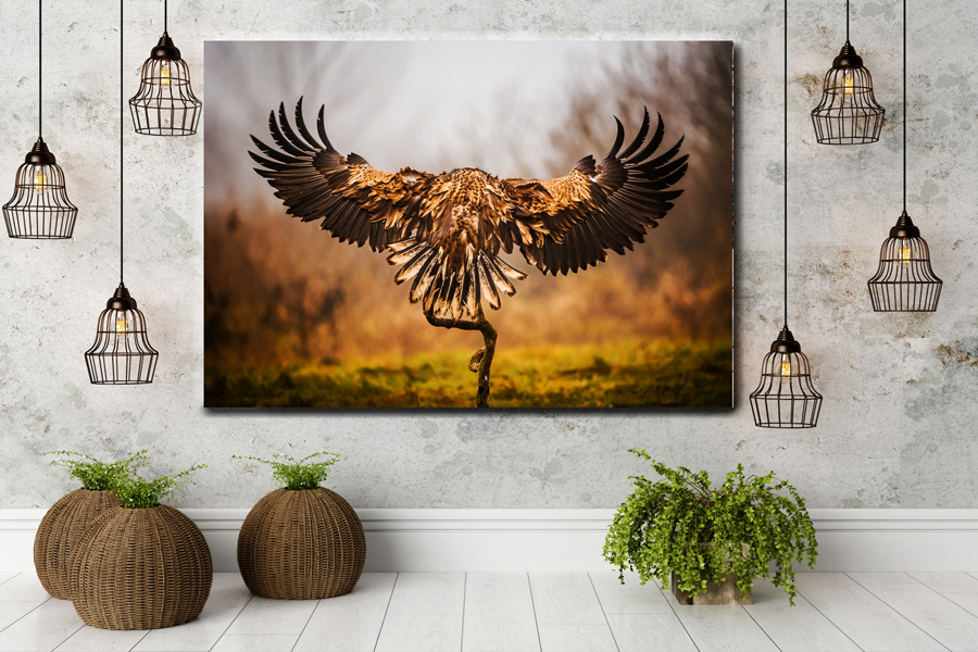 HD Metal Art, Indoor/Outdoor Wall Decor,  Pixolate, Subtint BIRDS 70006 200 111 THUMBNAIL