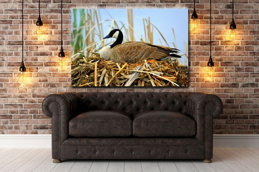 HD Metal Art, Indoor/Outdoor Wall Decor,  Pixolate, Subtint BIRDS 70007 200 THUMBNAIL