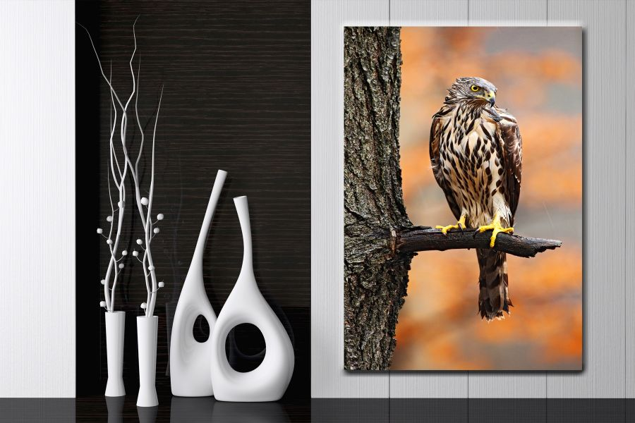Canvas Art Wall Decor, BIRDS 70021 LARGE