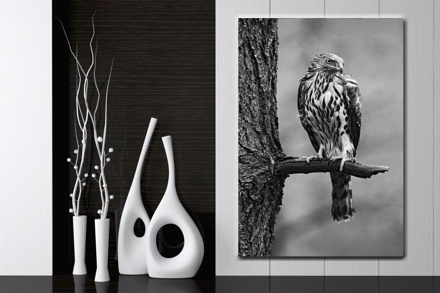 Canvas Art Wall Decor, BIRDS 70021A THUMBNAIL
