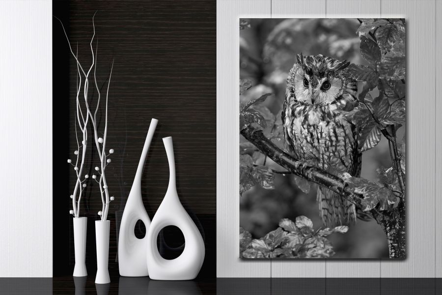 Canvas Art Wall Decor, BIRDS 70024A THUMBNAIL